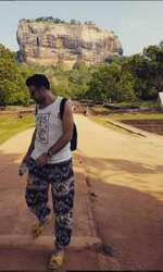 Cornel Ilie - se relaxează în Sigyria