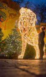 Gradina Zoologica din Londra, decorată de Sărbători
