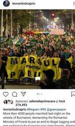 Mesajul postat de Leonardo DiCaprio pe Instagram