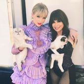 Paula Abdul si Taylor Swift, ambele mari iubitoare de animale