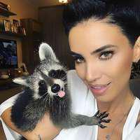 Adelina Pestrițu împreună cu ratonul ei au vizitat redacția Viva! Cindy și-a făcut de cap și a cucerit pe toată lumea. Vezi imaginile!