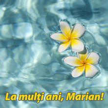 La multi ani, Marian!