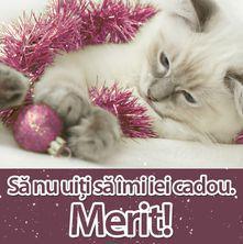 Sărbători Fericite!
