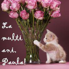 La multi ani, Paula!