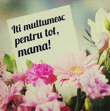 Îți mulțumesc pentru tot, mama