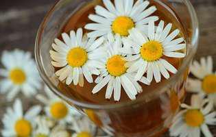 Remedii naturiste pentru arsurile la stomac și refluxul gastroesofagian