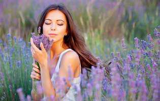 Remedii naturale împotriva căderii părului - lavanda