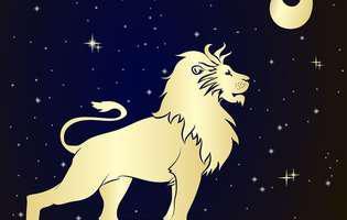 cum este bărbatul Leu