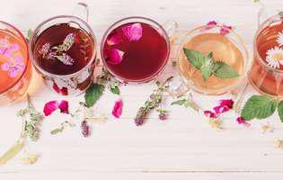Tratamente naturale pentru alergia la ambrozie. Plante cu efect depurativ