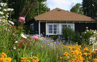 Trucuri simple să muncești cu spor în grădină