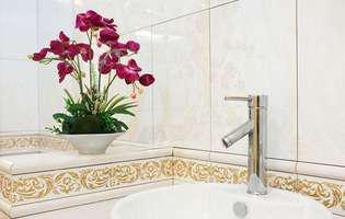 Alege plante iubitoare de umezeală pentru baie