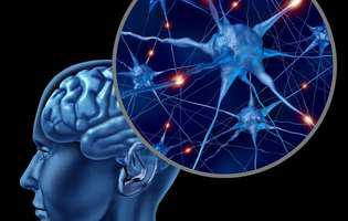 Folosim doar 10% din creier: simplu mit sau mister medical?