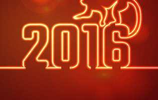 Top 5 zodii favorizate în anul Maimuței de Foc
