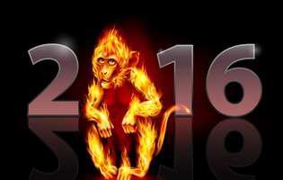 Horoscopul chinezesc 2016. Află ce ți-a pregătit Maimuța de Foc!