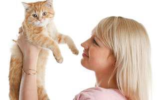 pisica ta miroase urât