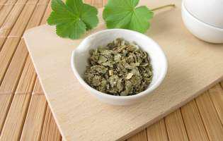 Remedii naturale pentru probleme de sănătate feminine