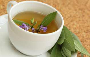 Plante care stimulează memoria
