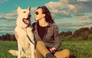 ce poate depista nasul unui câine