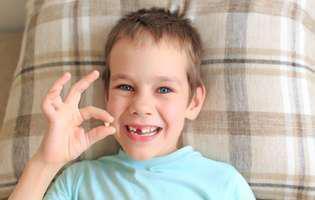 Dinții de lapte pot vindeca boli la vârsta adultă