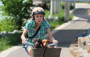 Terapia cu câini poate face minuni pentru sănătate