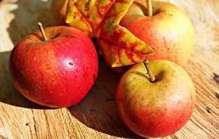 Cum alegi cele mai bune fructe și legume