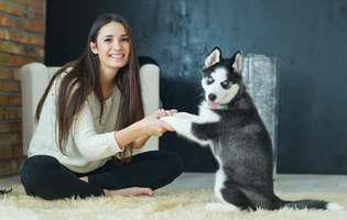 Ce boli poți lua de la câinele sau pisica ta