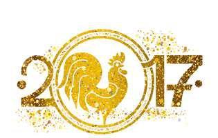 zodiile si horoscopul chinzesc în 2017