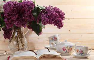 Cărțile romantice colecția lunii mai 2019