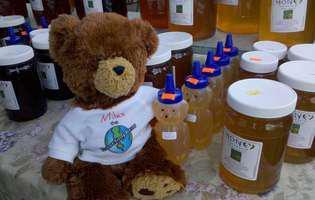 Beneficiile mierii de albine