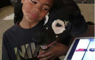 Carter și patrupedul Rowdy, bolnavi de vitiligo