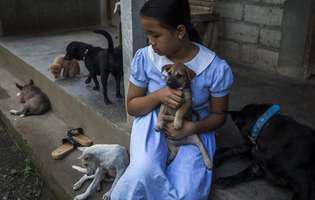 Motivul uluitor pentru care o fetiță de 12 ani locuiește în casă cu 31 de câini