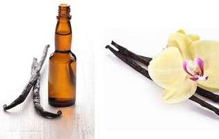 cum să faci singură esență de vanilie