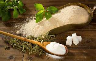 Îndulcitori naturali mai sănătoși decât zahărul: stevia