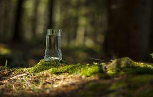 Apa, un adevărat miracol pentru sănătatea ta