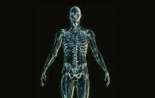 Sacroiliită - afecțiune care constă în inflamația unuia sau ambelor articulații sacroiliace - ale ilionului, unul dintre cele trei oase ale pelvisului. Imagine cu scheletul uman