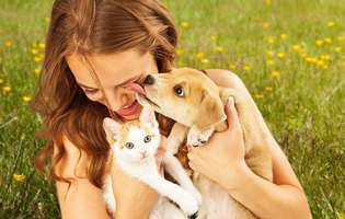 ce să faci dacă alergică la animale