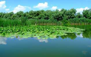 (P) Sejur relaxant în Delta Dunării, de la numai 399 lei de persoană!