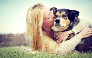de ce nu e bine să îți pupi câinele