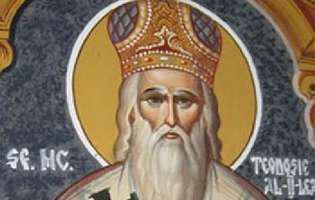 Sfântul Teodosie de la Brazi