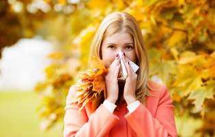 Alergia de toamnă