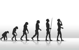 organe inutile si evolutia omului