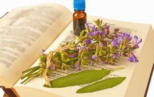Cum se ameliorează simptomele menopauzei cu ajutorul plantelor medicinale