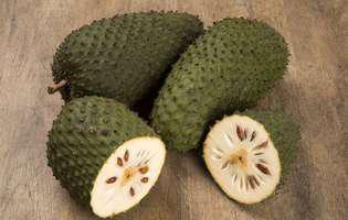 Sucul din fructe de graviola, adjuvant în tratarea cancerului