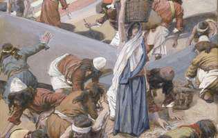 mana, hrana miraculoasă trimisă de Dumnezeu