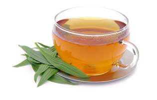 Cum să previi și să tratezi gripa și guturaiul prin metode naturale: bea ceai de pătlagină