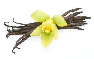diferența dintre vanilie și zahărul vanilinat
