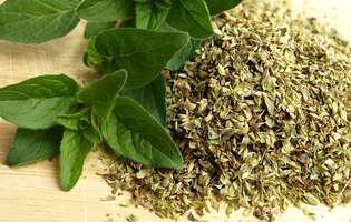 Oregano - 6 beneficii pentru sănătate ale acestei plante aromatice