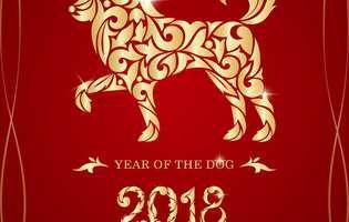 ce aduce anul Câinelui de pământ