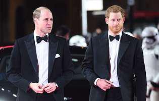 Ce îi face pe prinții William și Harry atât de diferiți față de orice alt membru al familiei regale. Motivul a fost dezvăluit de prințesa Diana