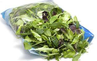 salata la punga e un pericol. te poate imbolnavi